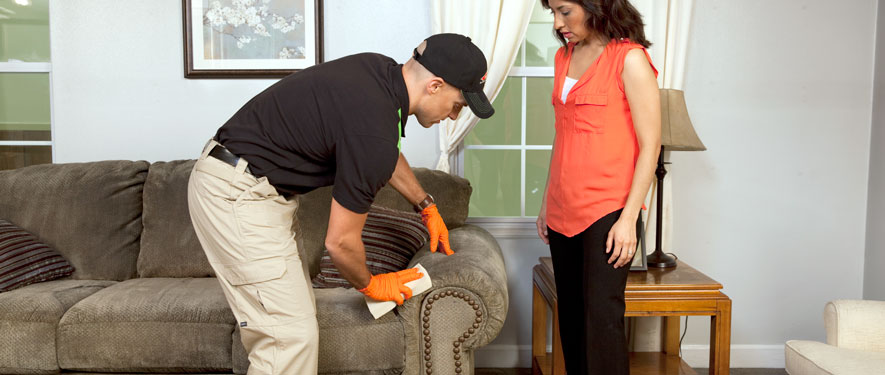 New Providence, NJ carpet upholstery cleaning
