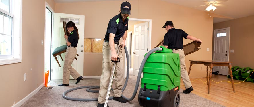 New Providence, NJ cleaning services